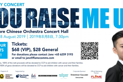 Charity Concert - You Raise Me Up