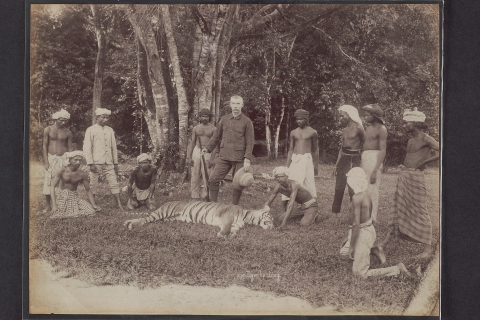 People in Peril, Environments at Risk: The history of Tigers in Singapore