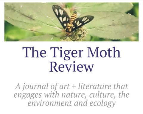 Call for submissions for The Tiger Moth Review, a new journal of art + lit
