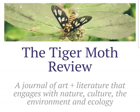 Call for Submissions: The Tiger Moth Review, Issue 2