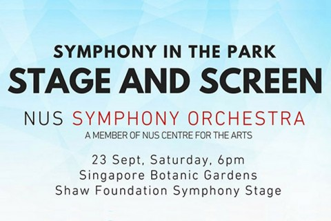 Symphony in the Park: Stage and Screen