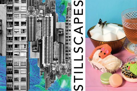 Art Exhibition: Stillscapes