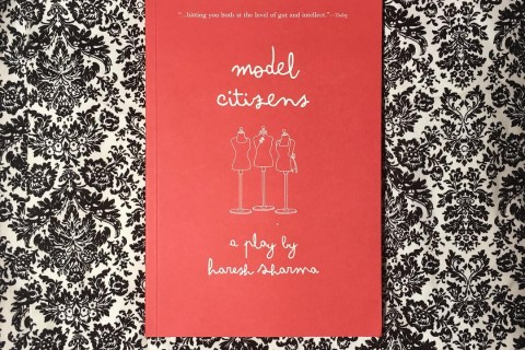 [Curious Reads] Model Citizens by Haresh Sharma